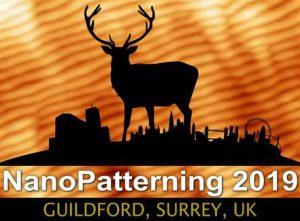NanoPatterning logo